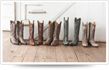 Cavenders boots